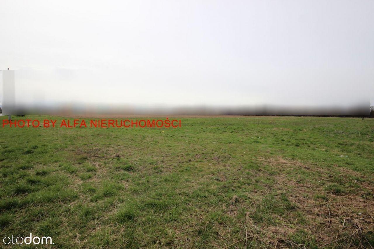 Działka, 10 000 m², Świdnica