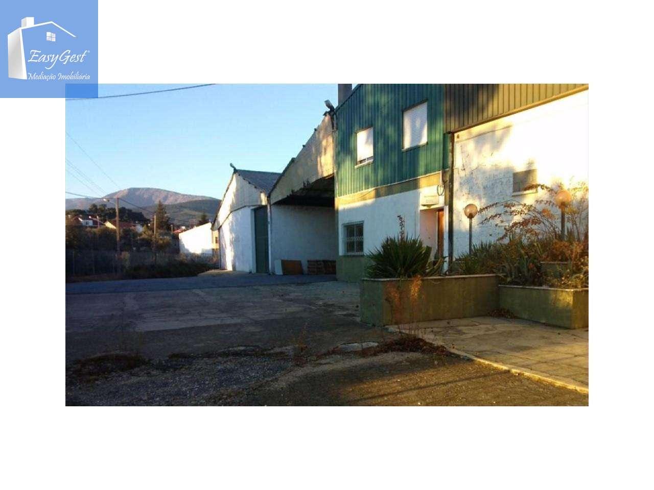 Armazém para comprar, Dominguizo, Castelo Branco - Foto 1