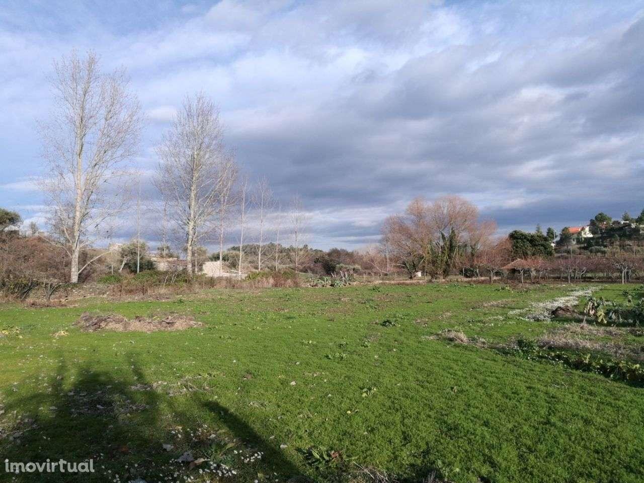 Quintas e herdades para comprar, Peredo, Macedo de Cavaleiros, Bragança - Foto 7