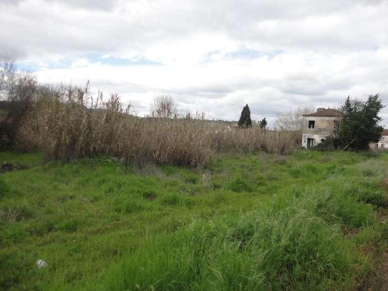 Quintas e herdades para comprar, São Miguel do Rio Torto e Rossio Ao Sul do Tejo, Abrantes, Santarém - Foto 6