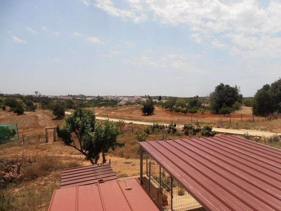 Quintas e herdades para comprar, Estômbar e Parchal, Lagoa (Algarve), Faro - Foto 40