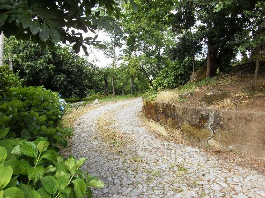 Quintas e herdades para comprar, Real, Dume e Semelhe, Braga - Foto 42