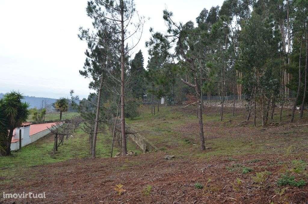 Terreno para comprar, Abade de Neiva, Braga - Foto 5
