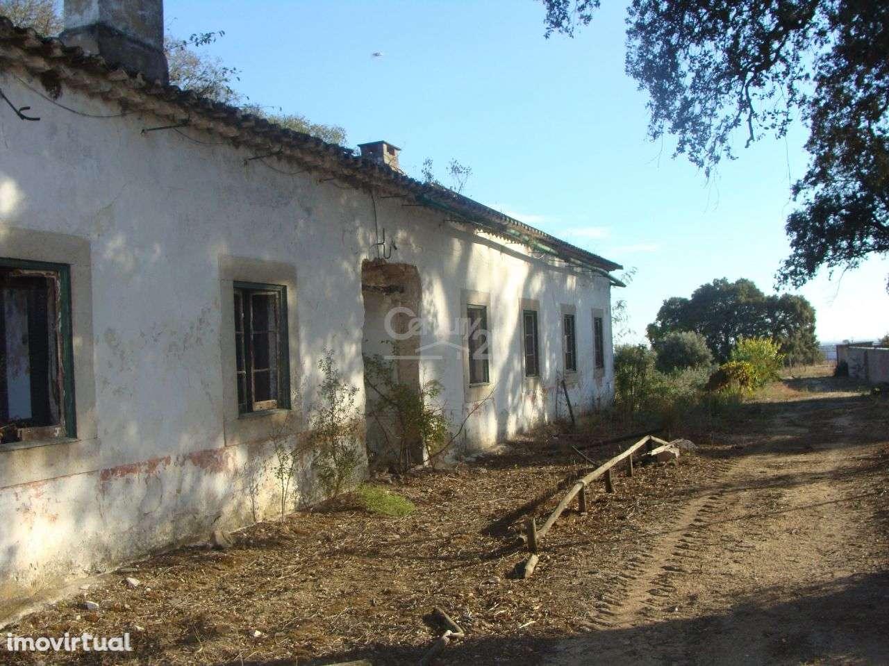 Quintas e herdades para comprar, Alcanhões, Santarém - Foto 5