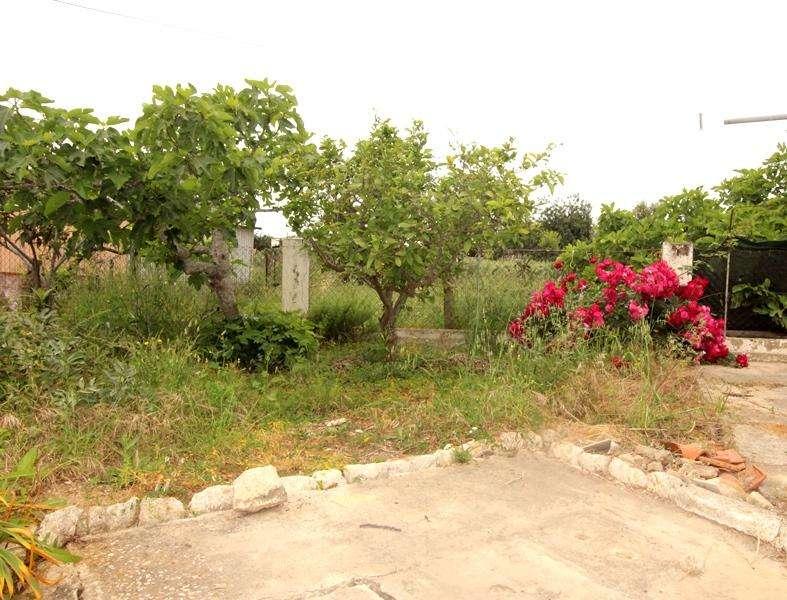 Moradia para comprar, Moncarapacho e Fuseta, Faro - Foto 10
