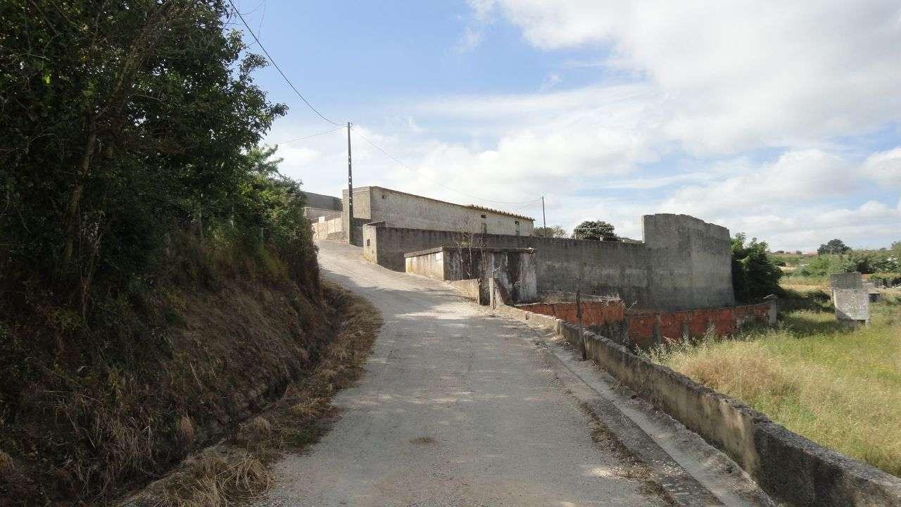 Quintas e herdades para comprar, Arruda dos Vinhos - Foto 4