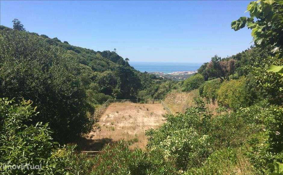 Quintas e herdades para comprar, Colares, Sintra, Lisboa - Foto 18