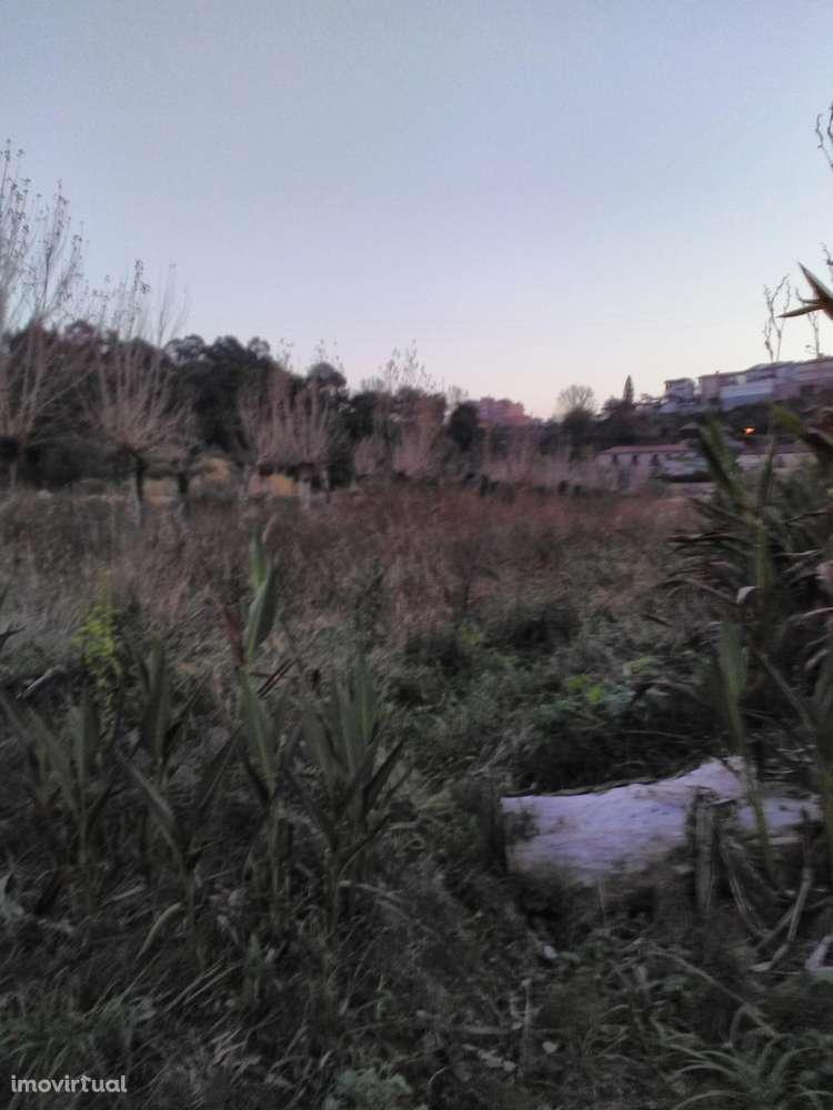 Quintas e herdades para comprar, Oliveira do Douro, Vila Nova de Gaia, Porto - Foto 22