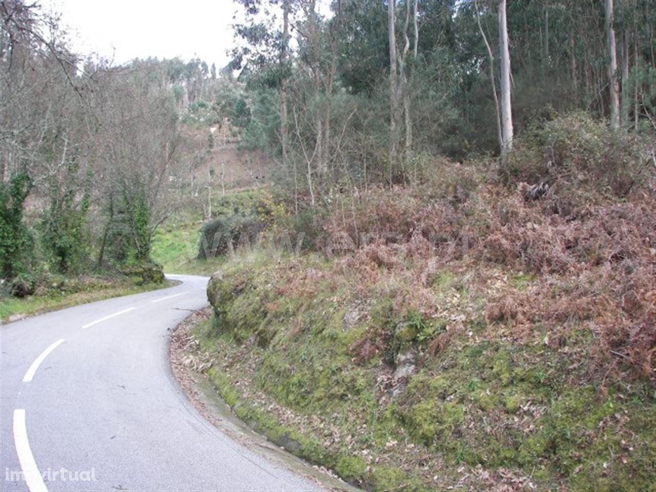 Terreno em Vila Cova