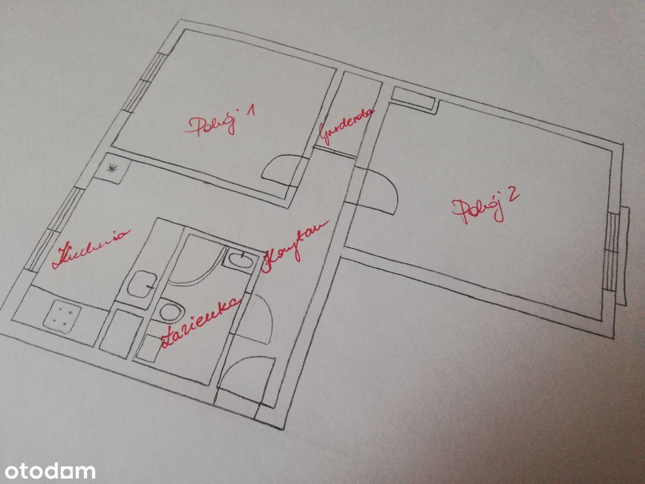 Duże słoneczne mieszkanie 2-pokojowe do wynajęcia