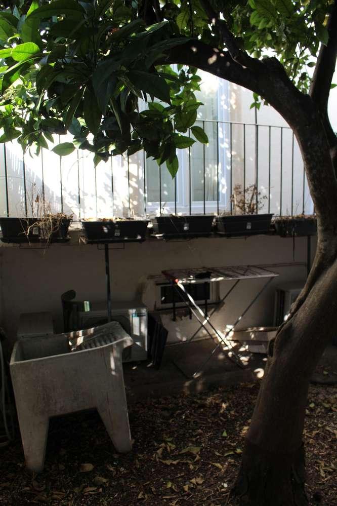 Moradia para comprar, Santarém (Marvila), Santa Iria da Ribeira de Santarém, Santarém (São Salvador) e Santarém (São Nicolau), Santarém - Foto 15