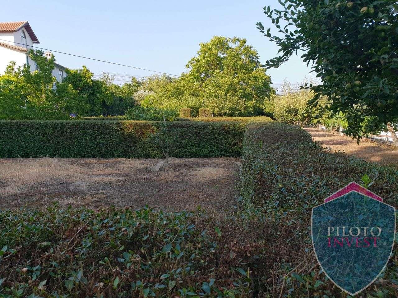 Quintas e herdades para comprar, Povolide, Viseu - Foto 22