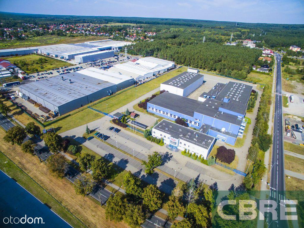 Plant & Warehouse: Kostrzyn n. Odrą