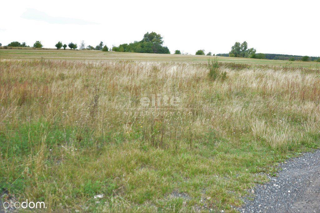 Wąwelnica, działka rolna 3171 m² - 72,61 zł/m²