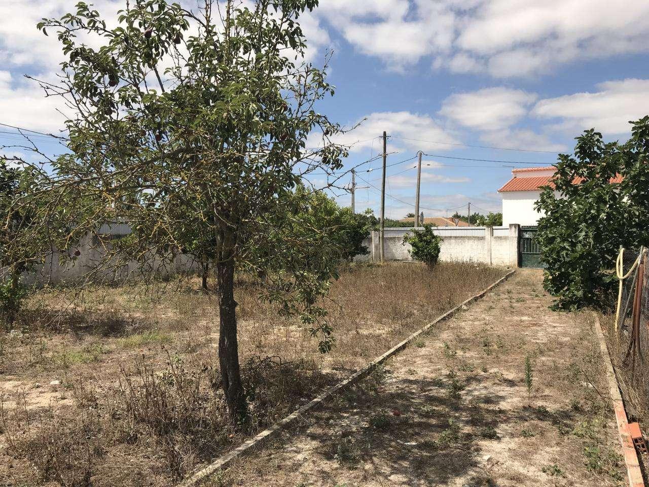 Terreno para comprar, Quinta do Anjo, Setúbal - Foto 26
