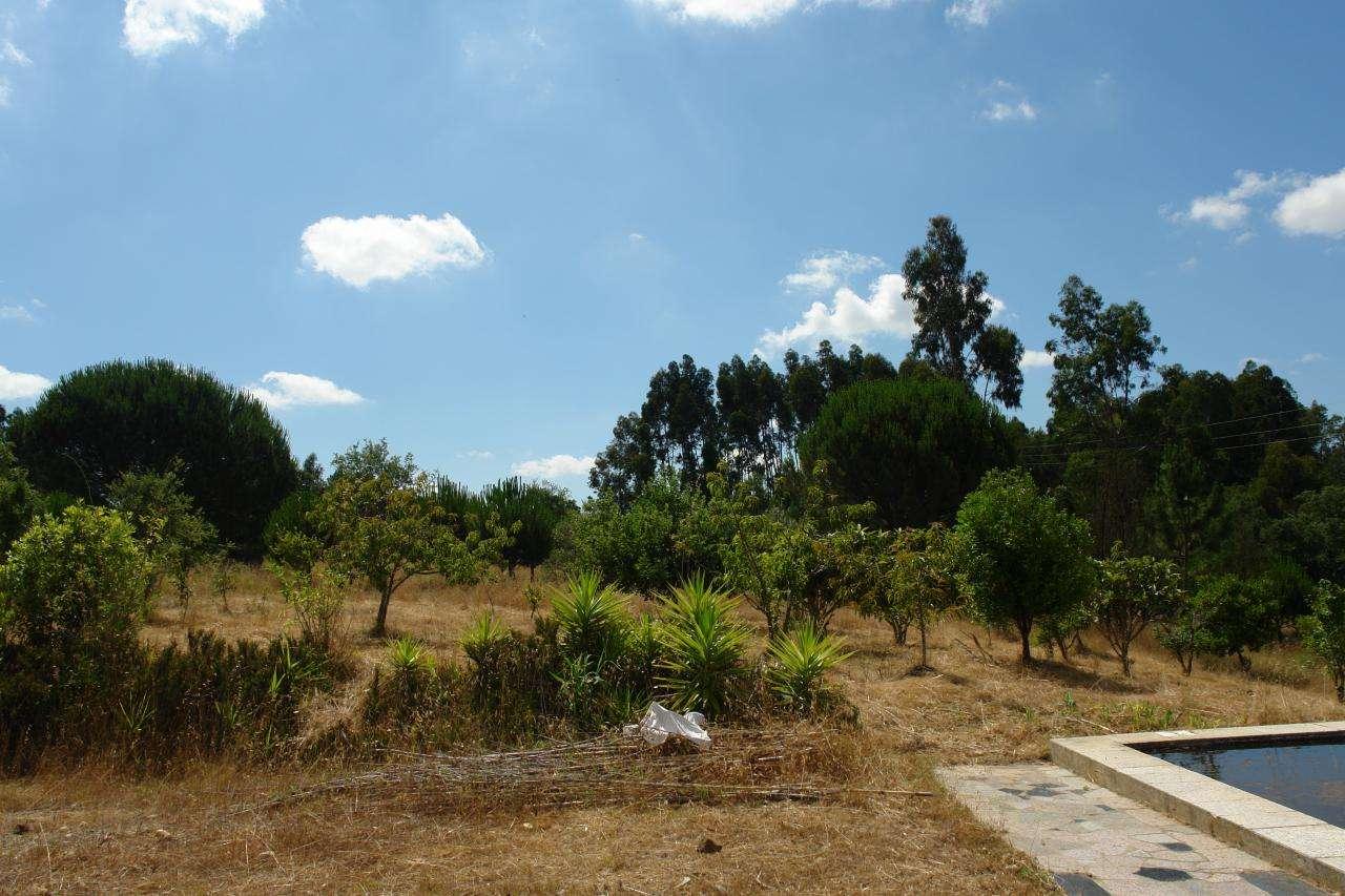 Quintas e herdades para comprar, São Teotónio, Beja - Foto 29