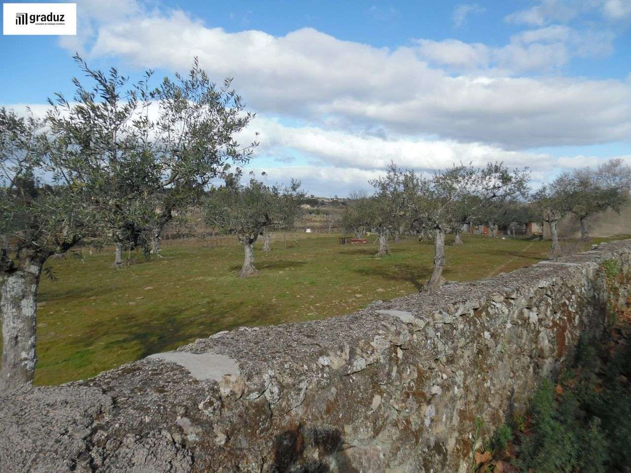 Terreno para comprar, Alcains, Castelo Branco - Foto 5