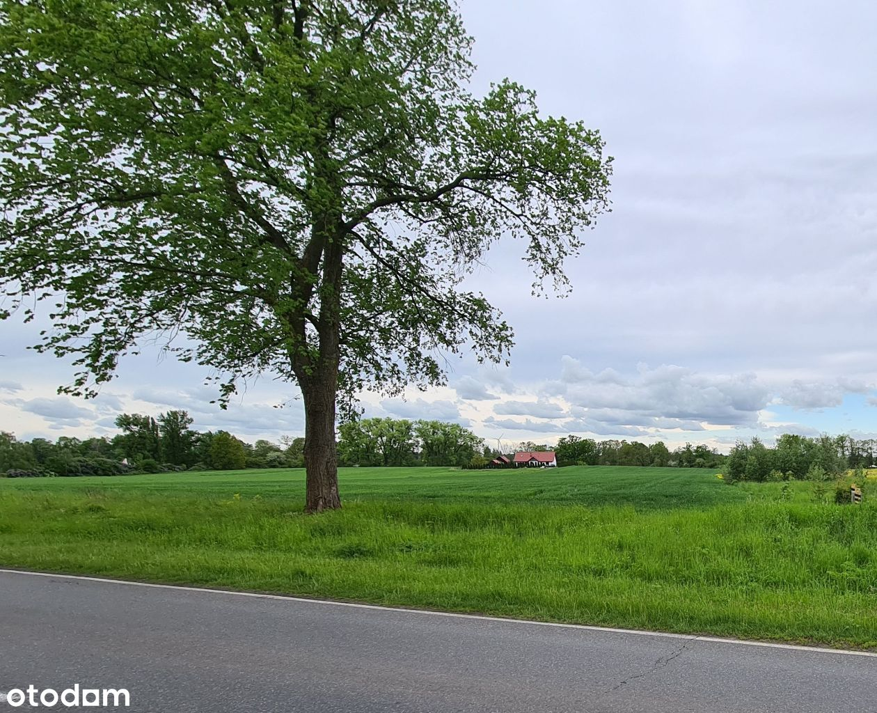 Duża działka rolna z możliwością zabudowy, Jezioro