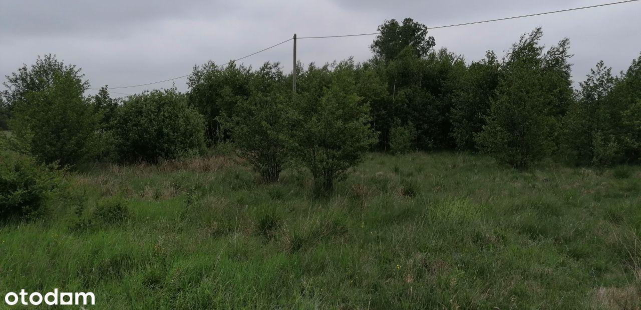Działki pod las bez możliwości przekształcenia