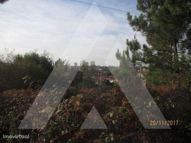 Terreno para comprar, Macieira de Sarnes, Oliveira de Azeméis, Aveiro - Foto 7