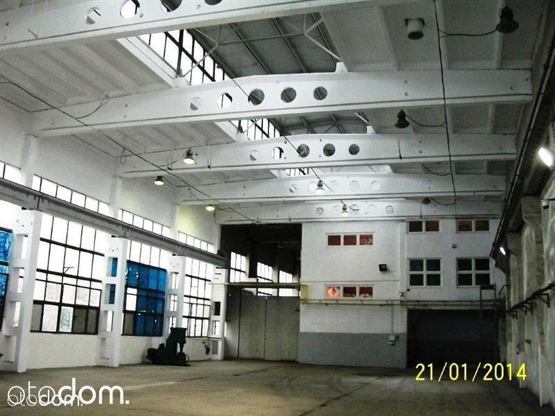 Hala/Magazyn, 3 900 m², Opole