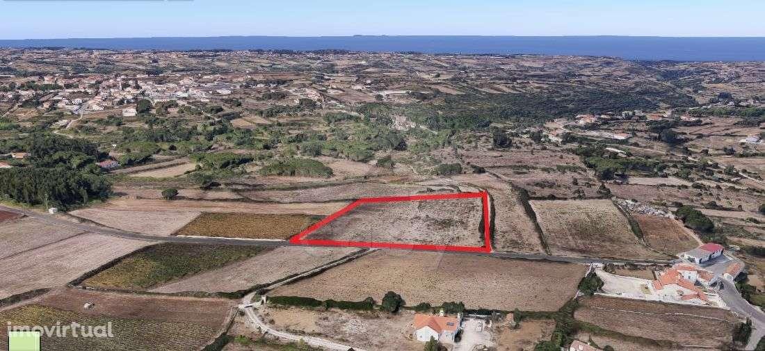 Terreno para arrendar, São João das Lampas e Terrugem, Sintra, Lisboa - Foto 1