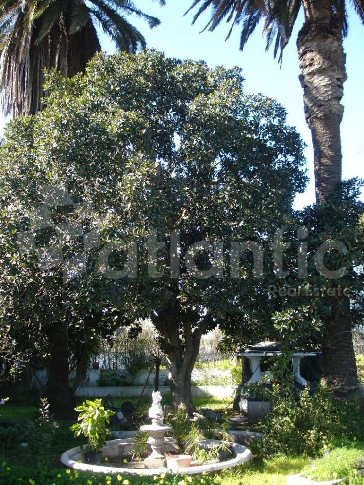 Quintas e herdades para comprar, Beja (Salvador e Santa Maria da Feira), Beja - Foto 37