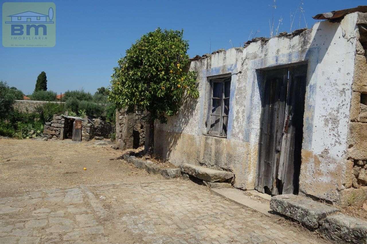 Quintas e herdades para comprar, Escalos de Cima e Lousa, Castelo Branco - Foto 16