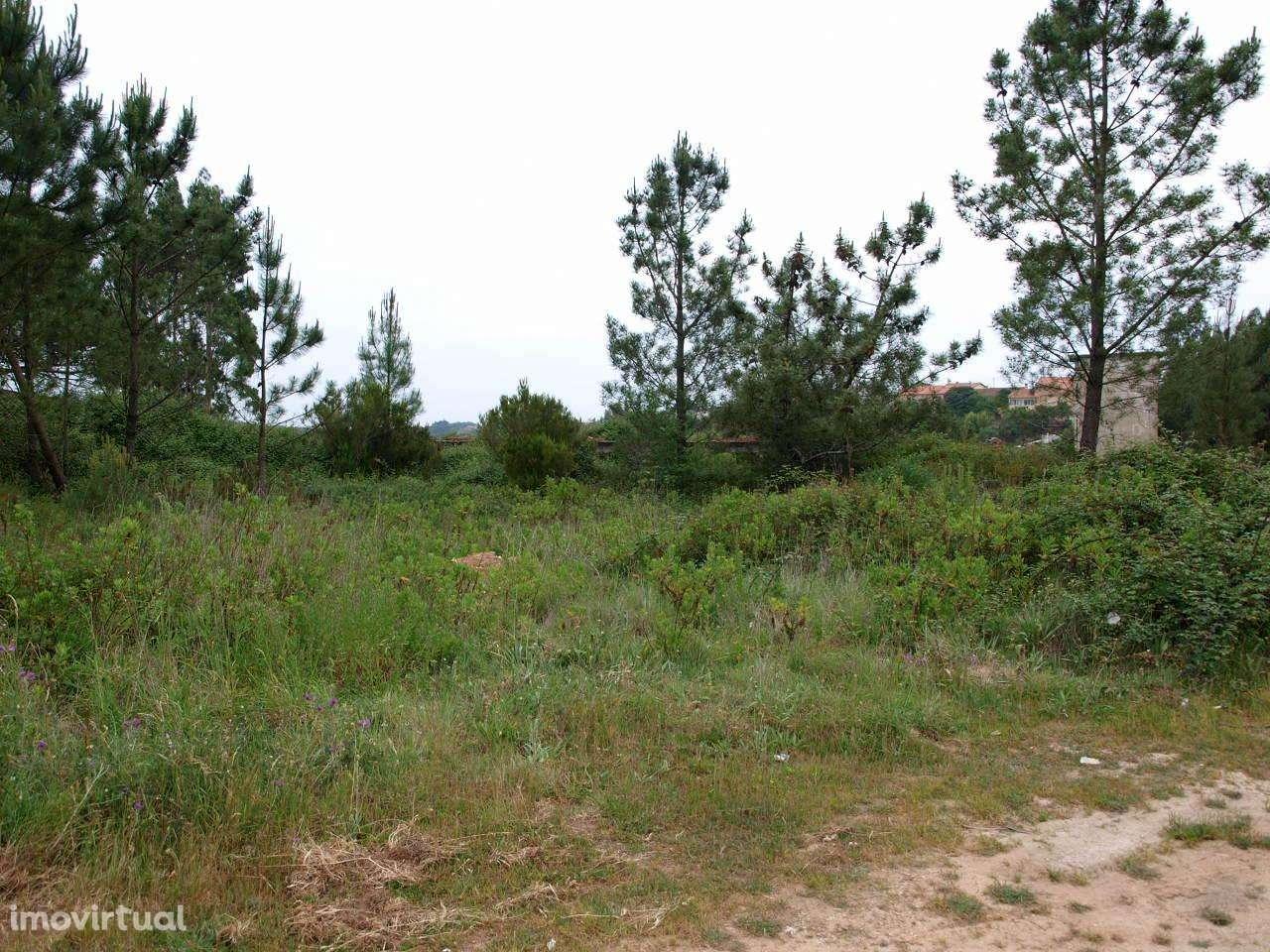 Terreno para comprar, Benedita, Leiria - Foto 3