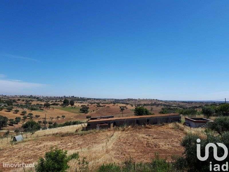 Quintas e herdades para comprar, Santiago Maior, Alandroal, Évora - Foto 15