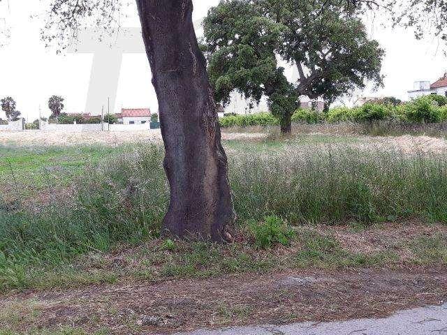 Terreno para comprar, Samora Correia, Santarém - Foto 6