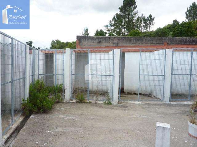 Quintas e herdades para comprar, Martinchel, Abrantes, Santarém - Foto 14