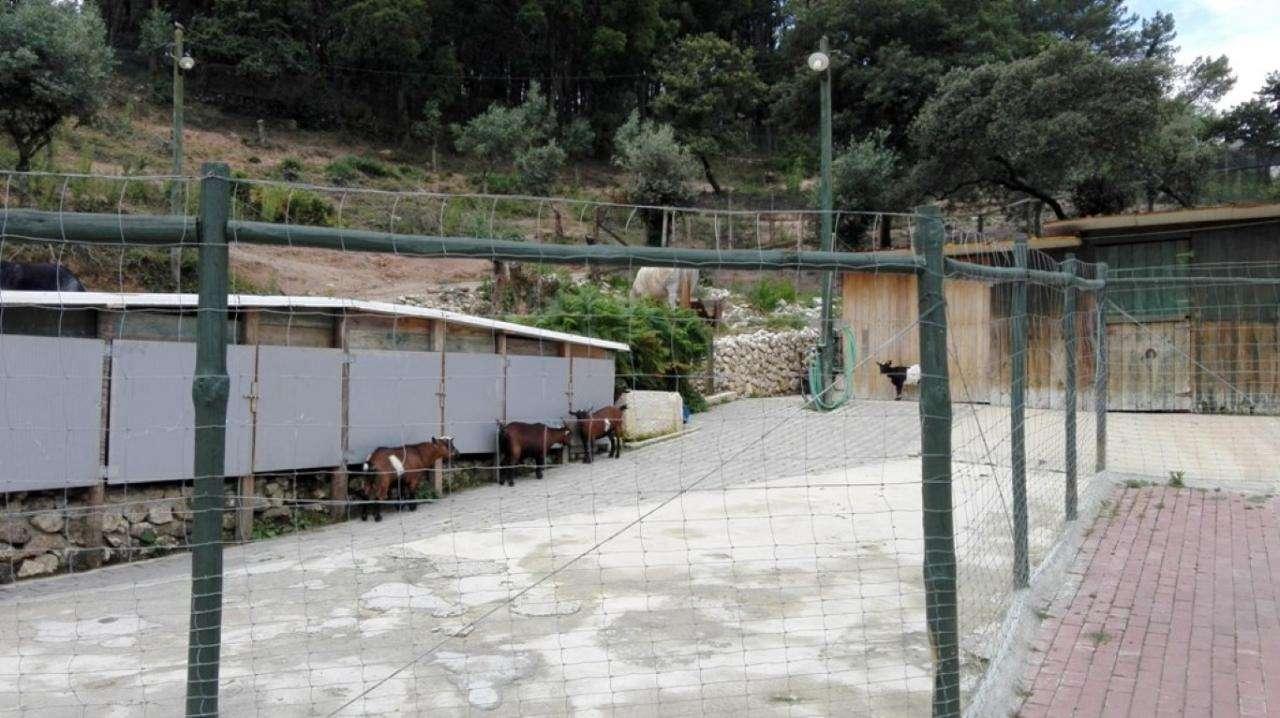Quintas e herdades para comprar, Lousa, Lisboa - Foto 26