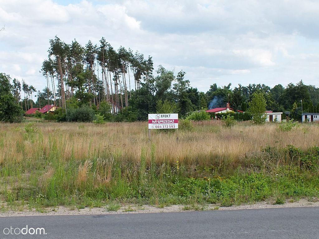 W sąsiedztwie Jeziora Dziadkowskiego