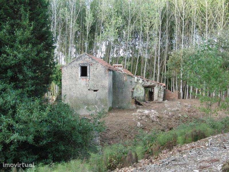 Terreno para comprar, Coz, Alpedriz e Montes, Leiria - Foto 48