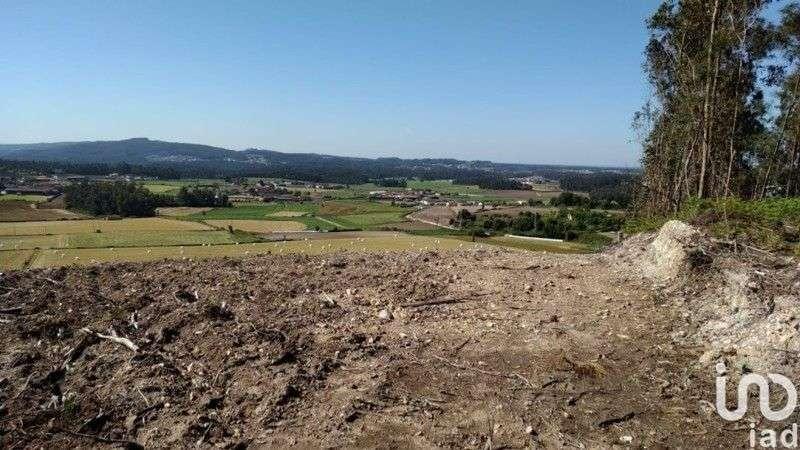 Quintas e herdades para comprar, Bagunte, Ferreiró, Outeiro Maior e Parada, Vila do Conde, Porto - Foto 9