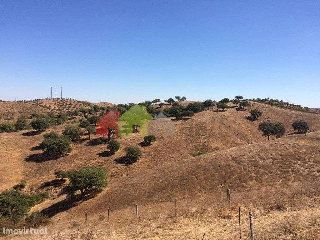 Quintas e herdades para comprar, Santana da Serra, Beja - Foto 18