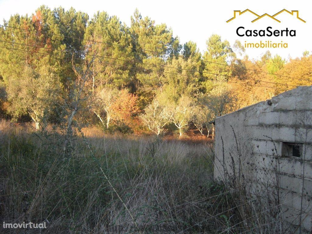 Terreno para comprar, Cabeçudo, Sertã, Castelo Branco - Foto 2