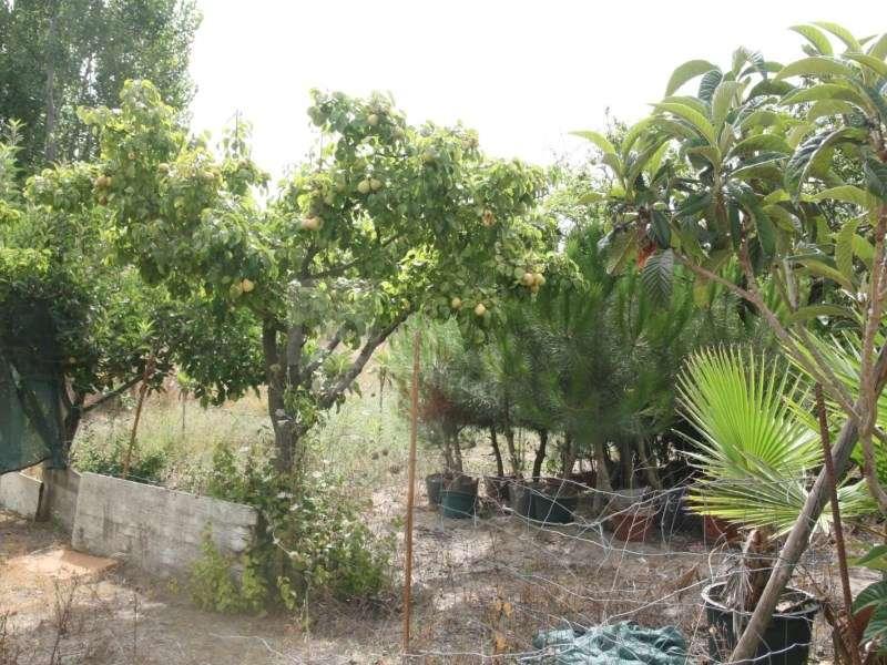 Terreno para comprar, Pinhal Novo, Setúbal - Foto 41