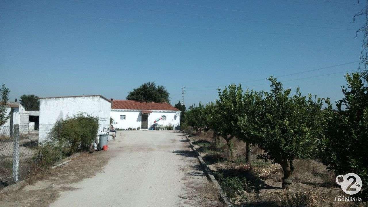 Quintas e herdades para comprar, Palmela, Setúbal - Foto 2