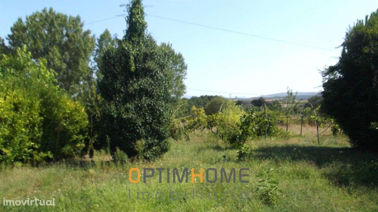 Quintas e herdades para comprar, Caria, Belmonte, Castelo Branco - Foto 12