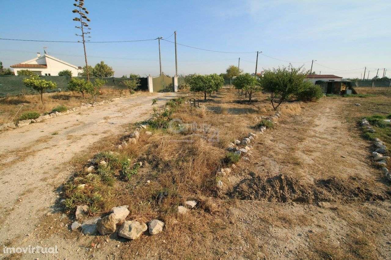 Quintas e herdades para comprar, Poceirão e Marateca, Setúbal - Foto 25
