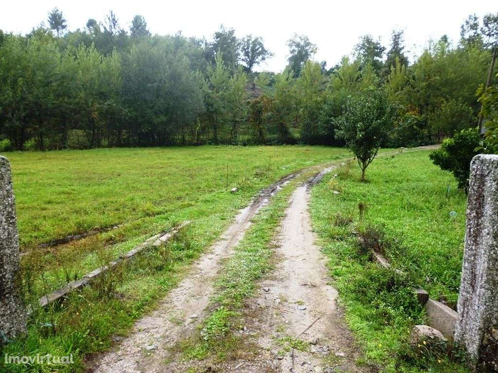 Terreno para comprar, Monsul, Braga - Foto 5