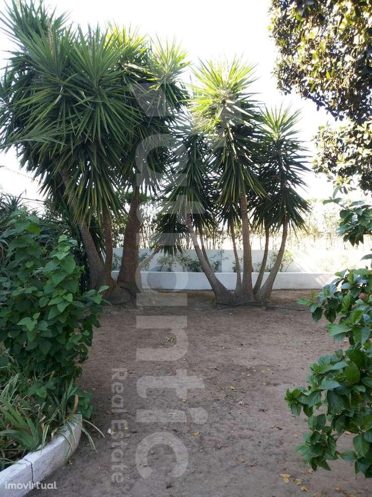 Quintas e herdades para comprar, Beja (Salvador e Santa Maria da Feira), Beja - Foto 48