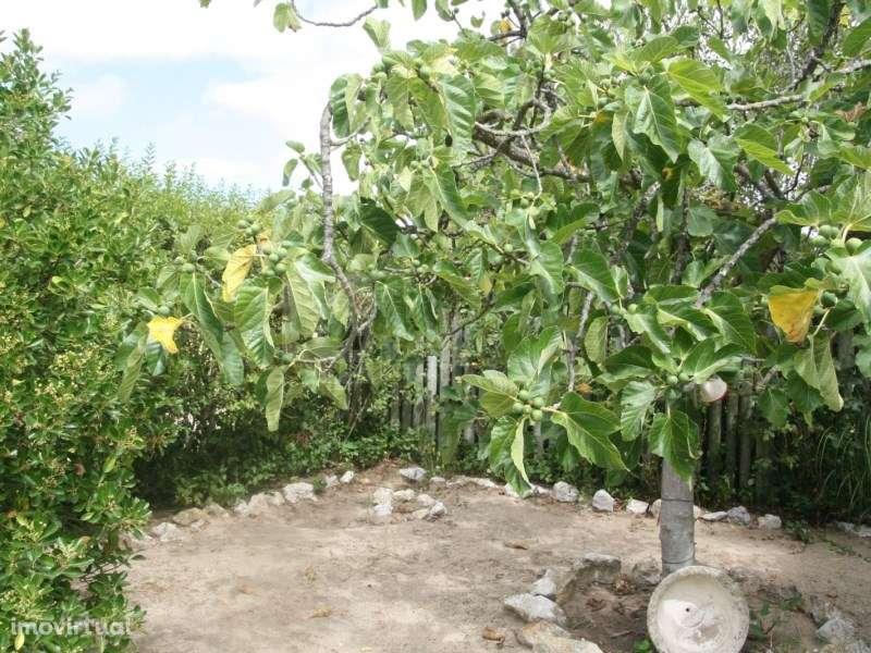 Terreno para comprar, Pinhal Novo, Setúbal - Foto 29