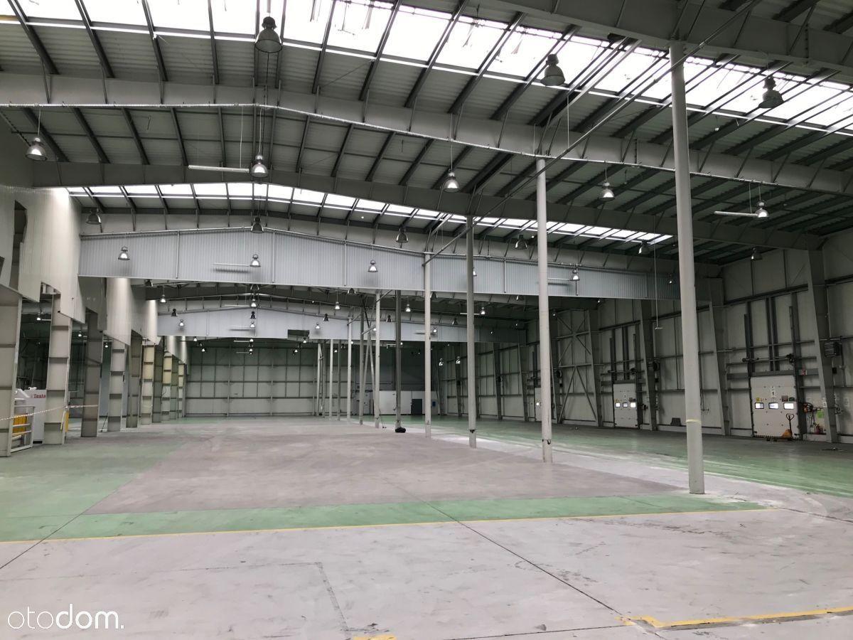 Hala/Magazyn, 5 326 m², Cieszyn