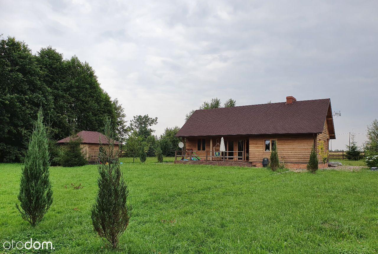 Dom drewniany nad jeziorem, linia brzegowa, pomost