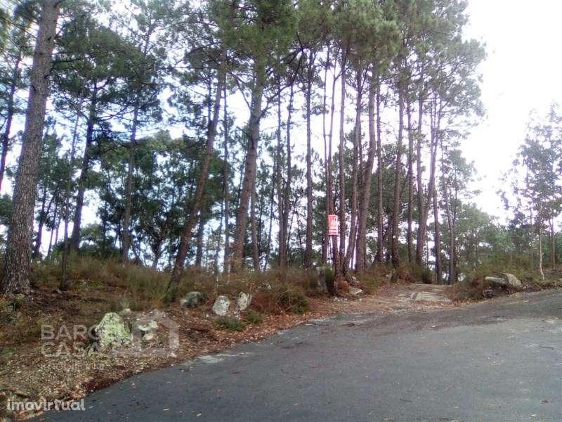 Terreno para comprar, Forjães, Braga - Foto 1