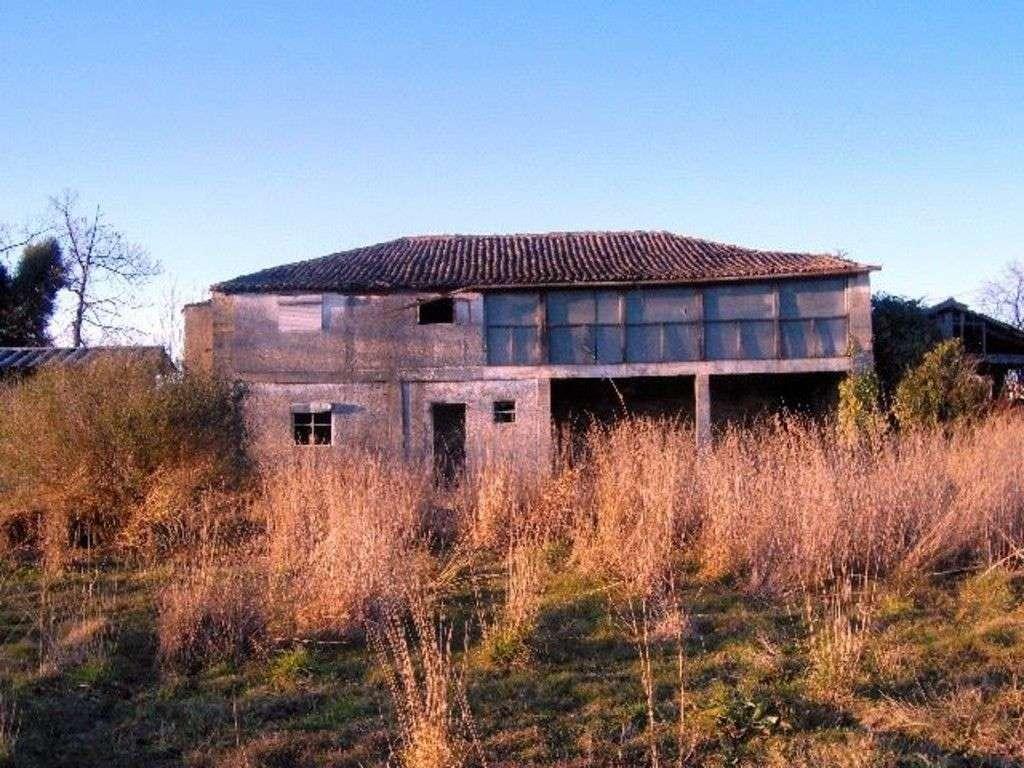 Quintas e herdades para comprar, Palmeira, Braga - Foto 3