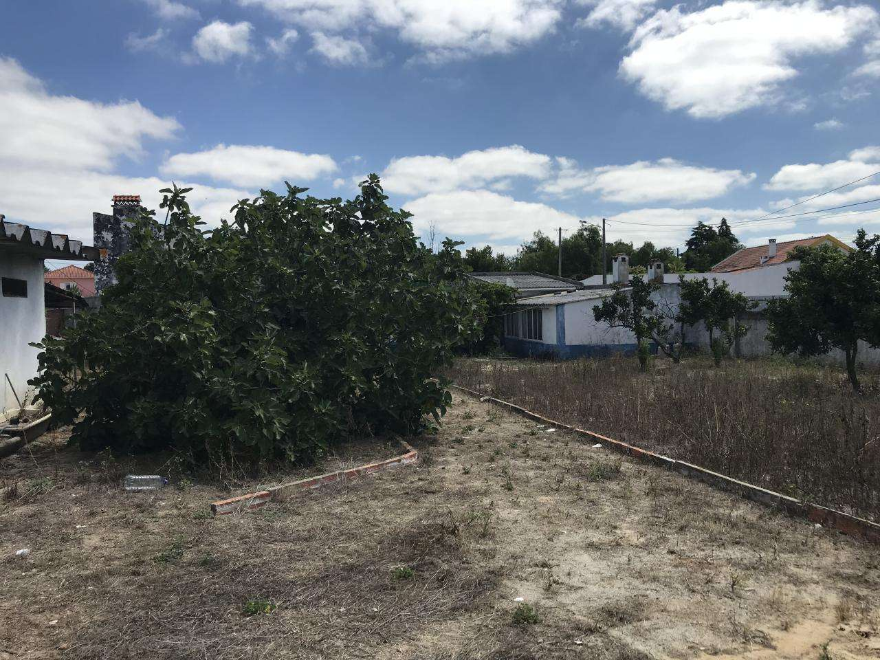 Terreno para comprar, Quinta do Anjo, Setúbal - Foto 18